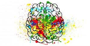 brain-2062048 1920
